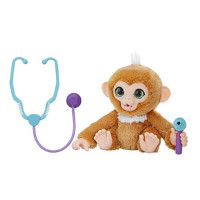 Check Up Zandi Interactive Ape