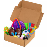 Fidget Toys 24-pakning