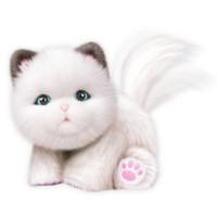 Cuddles en søt kattunge