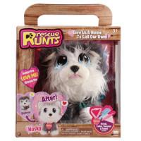 Rescue Runt Husky